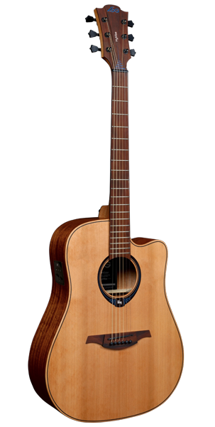 another front of a guitar